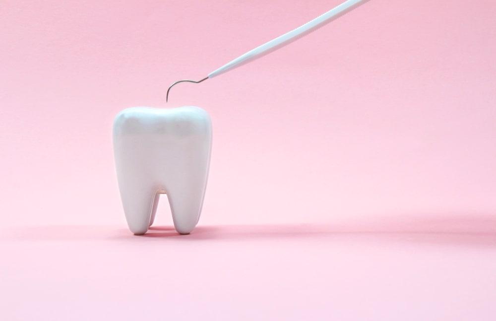 dent entière et instrument dentaire sur fond rose